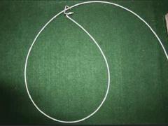Loop of wire